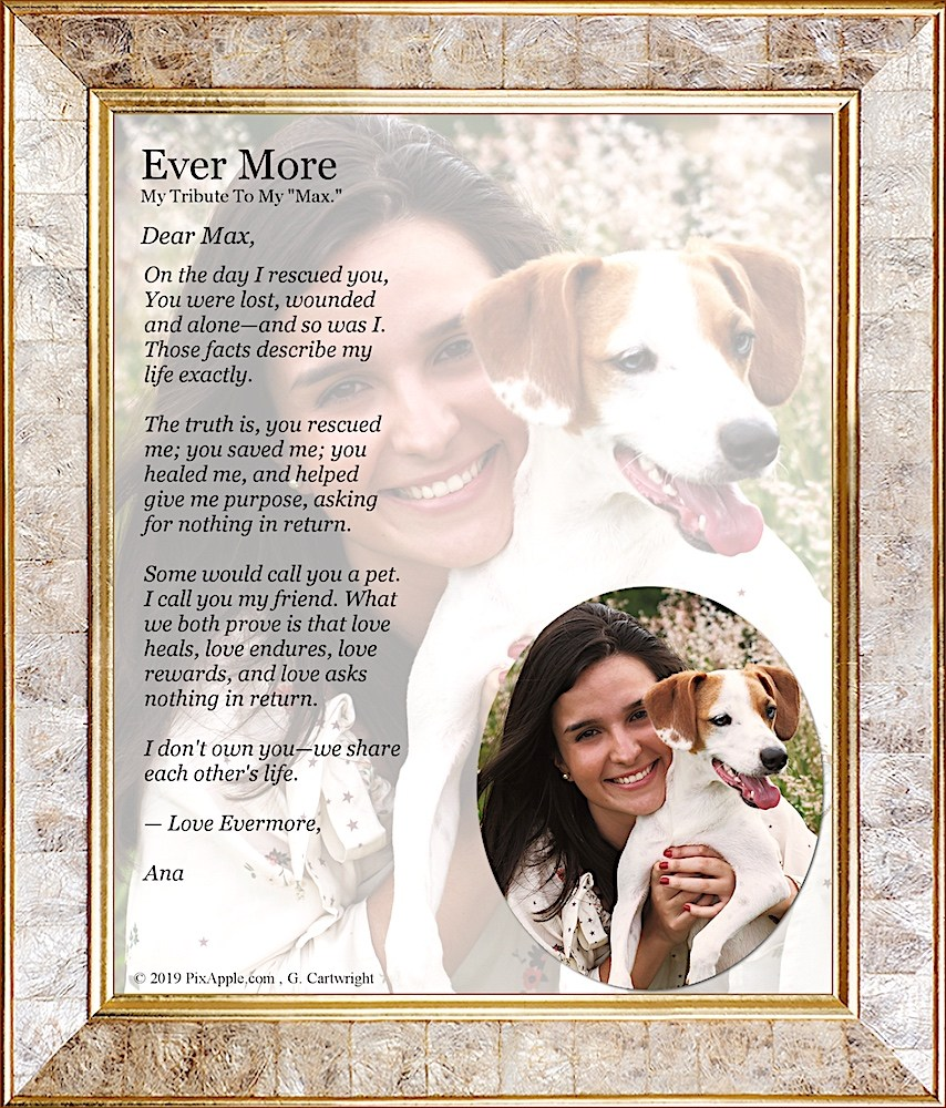 Ever More Pet Custom Portrait Pixapple